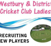 Westbury and District Cricket Club launches ladies section